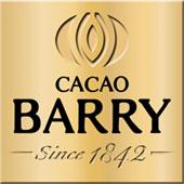 Шоколад для шоколадного фонтана Cacao Barry